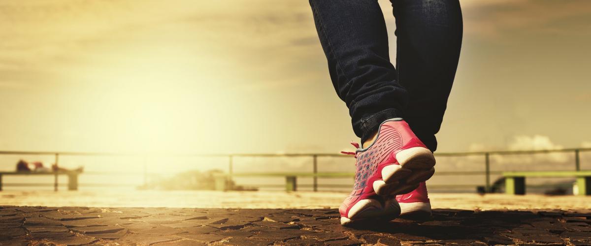 Publication d'un guide de promotion, consultation et prescription médicale d'activité physique et sportive pour la santé chez les adultes