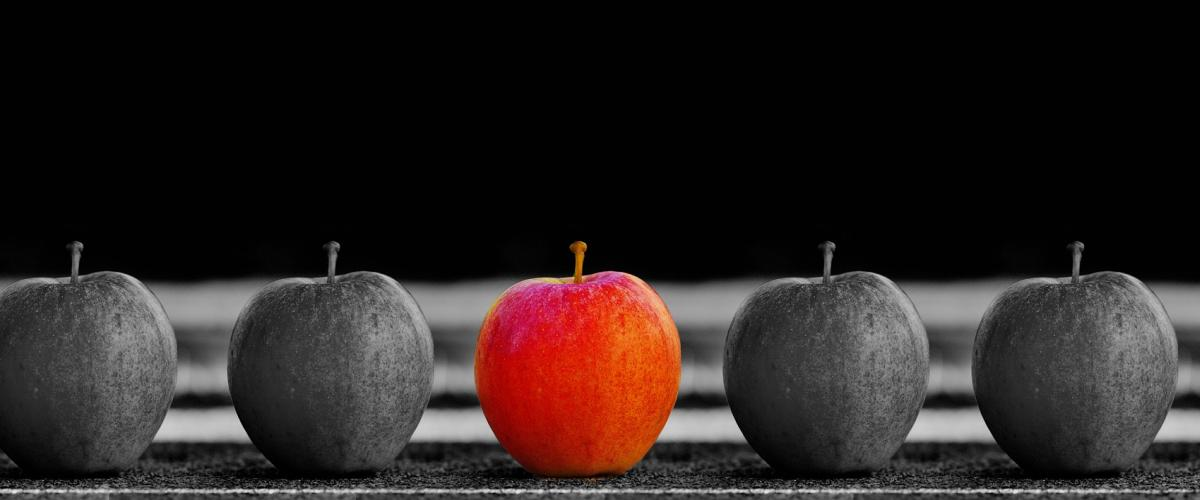 Surpoids, obésité et discrimination